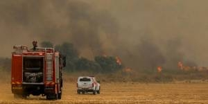 Residents Evacuated as Fires Rage Across Israel Amid Extreme Heatwave